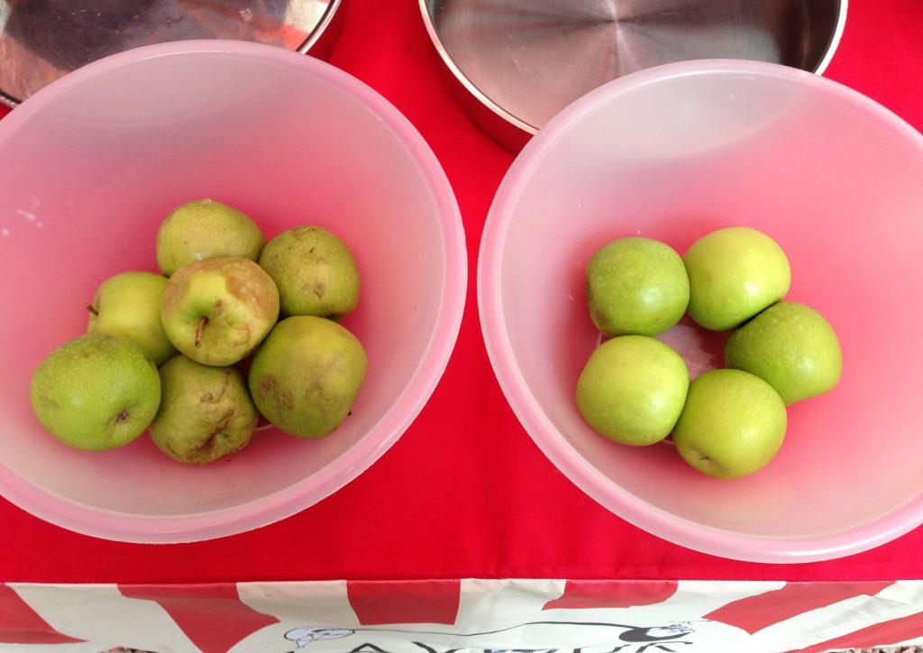 bruised-and-unbruised-apples